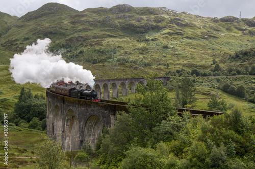 Fototapeta Smoke Emitting From Train On Bridge obraz na płótnie