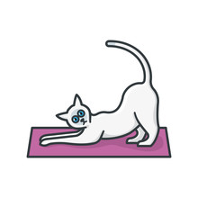 Stretching Yoga Siamese Cat Isolated Vector Illustration  For Yoga Day On February 22nd