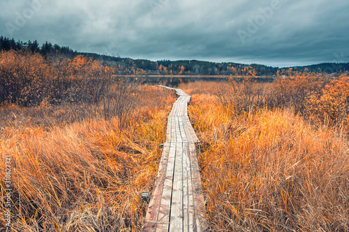 Fotografija wooden flooring path to the boat pier on Lake Ladoga in Karelia