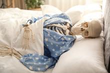 Human Skeleton In Pajamas Lyin...