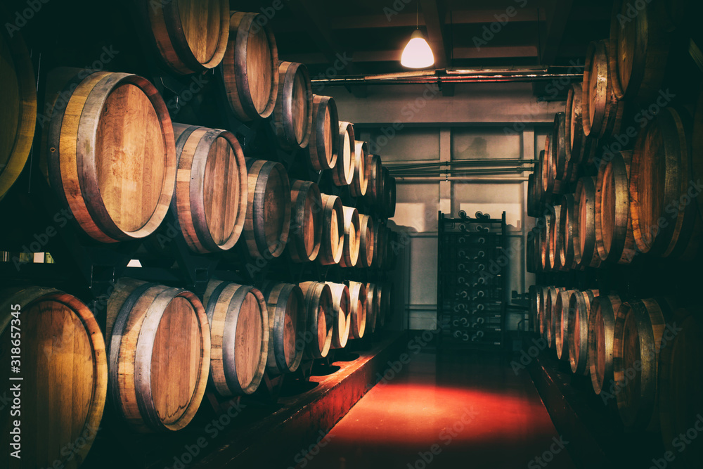 Fototapeta Oak barrels with wine in dark cellar. Modern production of wine with the observance of age-old traditions. Noises and large grain - stylization under the film. Soft focus.