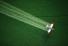 Aerial View Of A Crop Duster O...