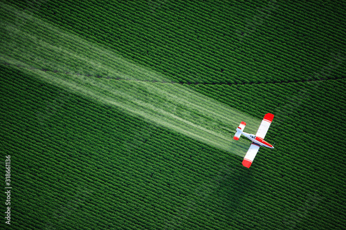 Photo aerial view of a crop duster or aerial applicator, flying low, and spraying agricultural chemicals, over lush green potato fields in Idaho