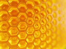 Fragment Of Honeycomb With Ful...
