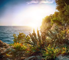 Fototapeta Morze Beautiful sunset above Adriatic sea and coastline in Makarska.
