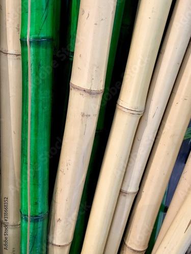 Cuadros en Lienzo Full Frame Shot Of Bamboos