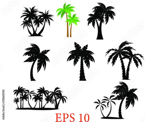 Tropical palm trees set silhouettes. Palm set clip art ,black palms, Eps 10 Wall mural