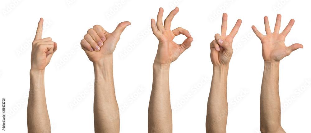 Fototapeta Man hand showing various gestures