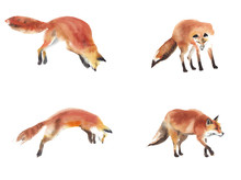 Fox Hunting Set Watercolor Pai...