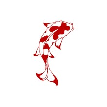 Red Koi Fish