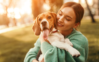 FototapetaHappy woman embracing beagle dog in park