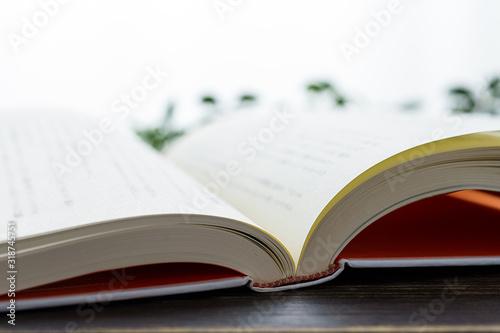 ハードカバーの本 Tapéta, Fotótapéta