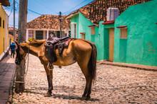 Trinidad, Cuba, Ciudad Colonial Donde El Transporte Depende De Caballos.