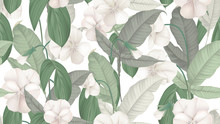 Floral Seamless Pattern, White...