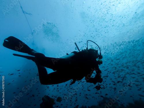 Fotografía Low Angle View Of Woman Scuba Diving In Sea