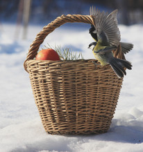 There Is A Small Basket Of App...