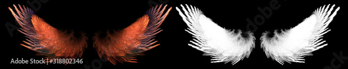 fantasy red bird wing with white clipping mask