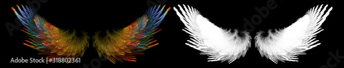 fantasy colorful bird wing with white clipping mask Fototapet