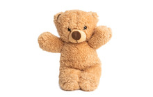 Soft Bear Toy Isolated