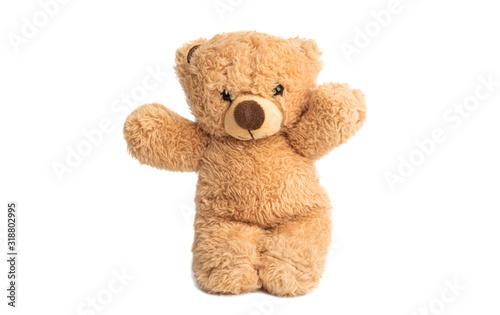 Fotografia soft bear toy isolated