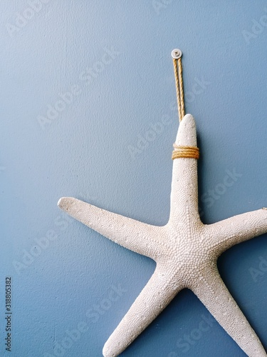 Obraz na plátně Close-Up Of Artificial Starfish Hanging On Blue Wall