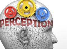 Perception And Human Mind - Pi...