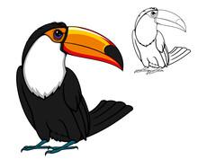 Cartoon Toucan Bird And Outlin...