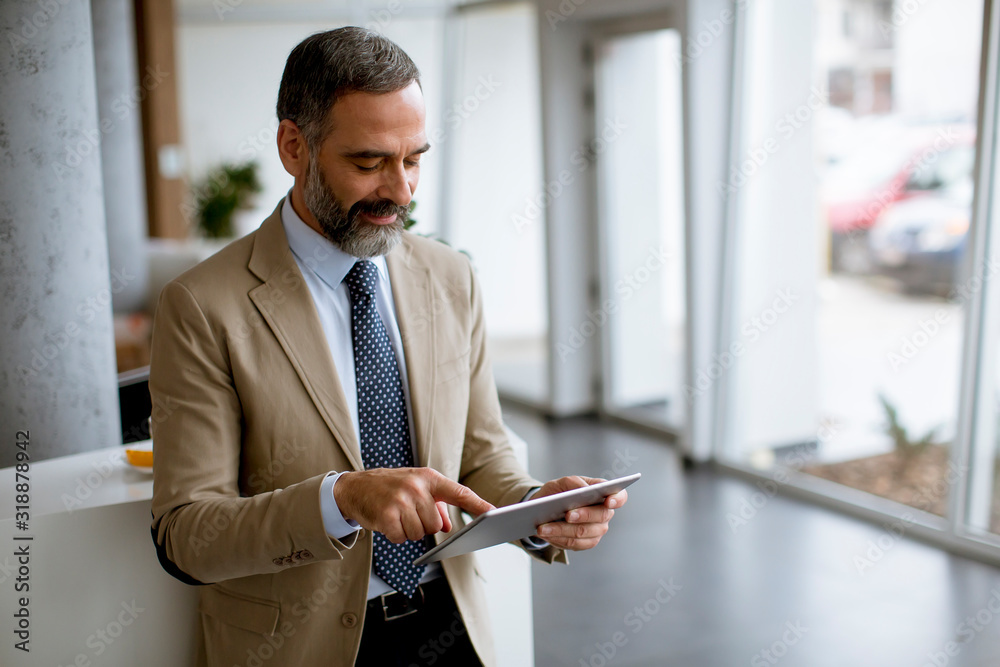 Fototapeta Portrait of handsome mature businessman with digital tablet in the office