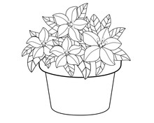 Flowerpot With Flowers. Vector Linear Drawing For Coloring. Beautiful, Lush Flowers And Leaves In A Flower Pot Pattern For Children Or Adult Coloring. Outline. Gardening And Botanical Illustration