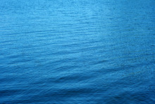 Lake Water With Tiny Waves
