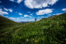 Summer Landscape With Blue Sky And Clouds