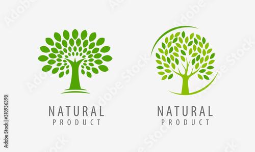 Obraz Natural product logo. Tree symbol or label vector illustration - fototapety do salonu