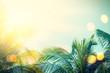 Leinwandbild Motiv Tropical palm tree with colorful bokeh sun light on sunset sky cloud abstract background.