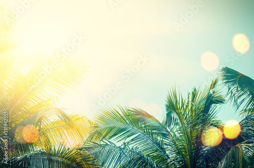 Tropical palm tree with colorful bokeh sun light on sunset sky cloud abstract background. - 318942555