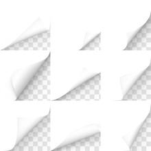 Curled Corners, Paper Sheet Ed...