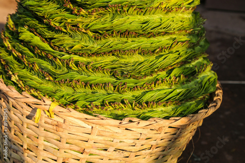Leaves of betel in a basket ready for consumption in the market Canvas Print