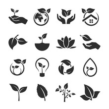 Set Of Leaf And Nature Icons