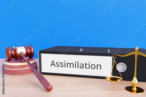 Assimilation – Folder with labeling, gavel and libra – law, judgement, lawyer Wallpaper Mural