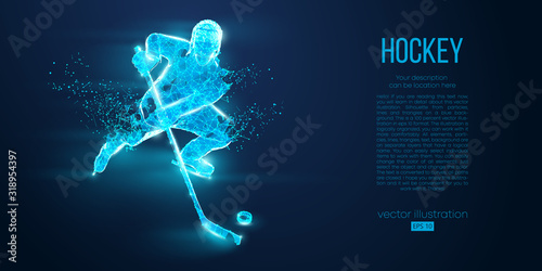 Fotografie, Tablou Abstract silhouette of a hockey player from particles