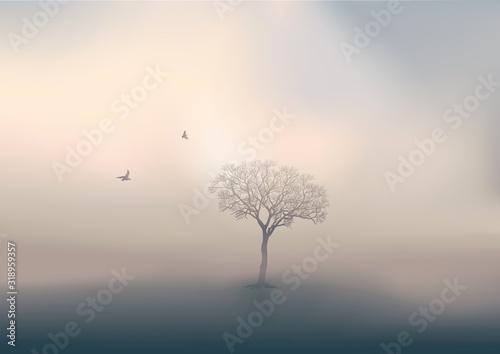 Obraz na plátně Pendant la saison d'hiver, le jour se lève sur un paysage de campagne, avec pour unique décor un arbre sans feuille perdu dans la brume