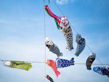 Low Angle View Of Fish Windsocks Hanging Against Sky