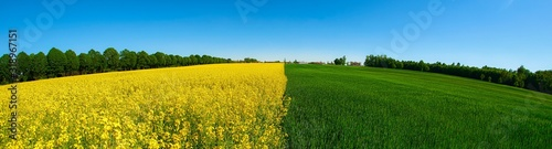 Photo SCENIC VIEW OF AGRICULTURAL FIELD AGAINST CLEAR BLUE SKY