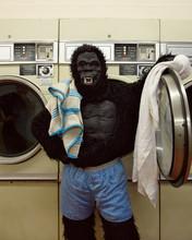 Responsible Gorilla Doing Laun...