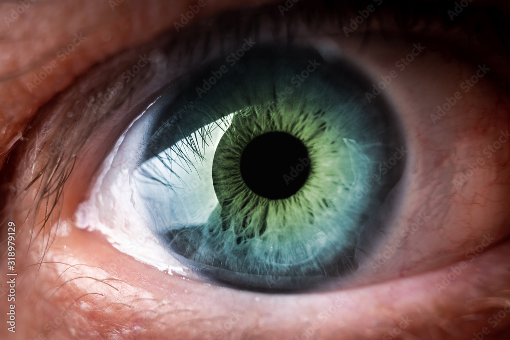 Fototapeta Human eye macro