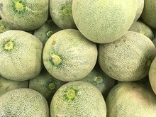 Full Frame Shot Of Cantaloupes For Sale At Market Stall