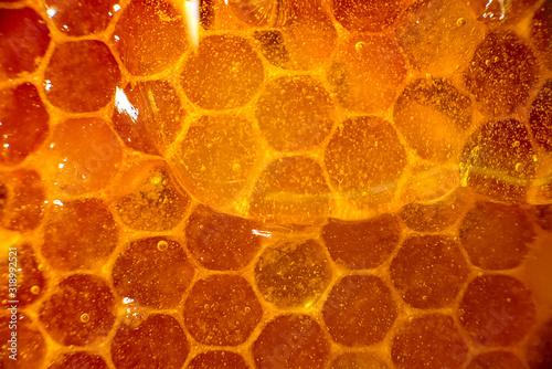 Fotomural Honey close-up