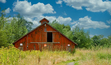 Old Red Barn In The Weeds