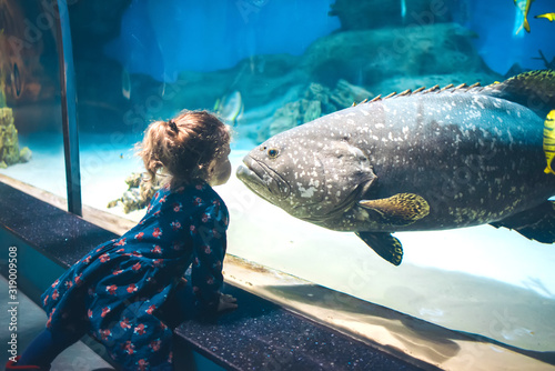 Photo Child watching fish through the glass in a Oceanarium.