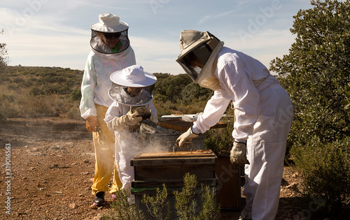 Photo Beekeepers working collect honey. Beekeeping concept.