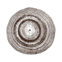 Monotone Wood Texture Stamp. Detailed Tree Ring Design. Rough Organic Tree Rings With Close Up Of End Grain.